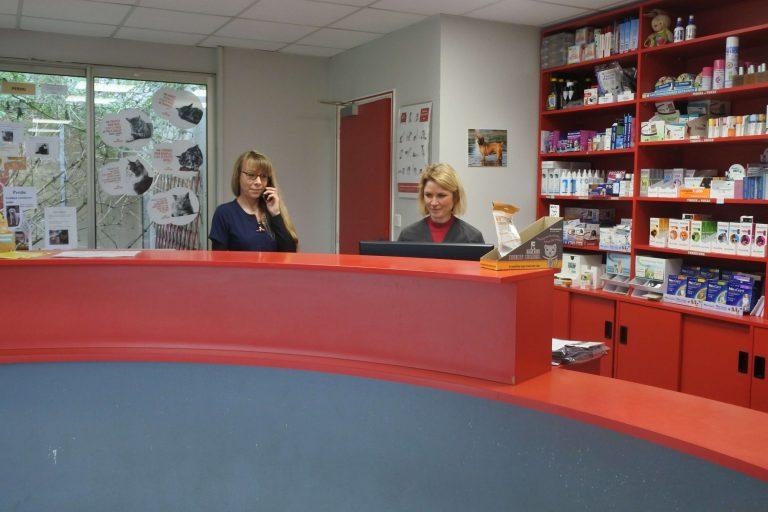 accueil de la clinique vétérinaire aux les assistantes vétérinaires qui répondent au téléphone